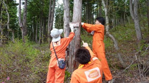 長野県志賀高原「バンダイナムコの森」での活動を実施しました