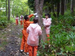 「バンダイナムコの森」で保全活動と地域交流イベントを実施しました。